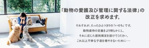 pet_banner